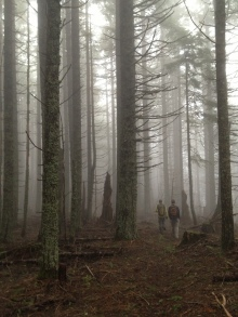 Hiking in the fog on the Nick Eaton Trail